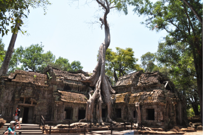 Ta Prohm, a.k.a. the temple with the big trees. (Photo: Stella NW)