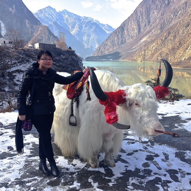 Met Mr. Yak at Diexi Lake!